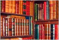 Центральная библиотека Череповца открыла доступ к 80 тысячам книг в электронном виде
