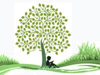 Экологический конкурс «Волшебный заповедник»