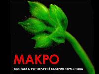 Dыставка фотографий Валерия Перминова «Макро»