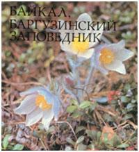 Байкал, Баргузинский заповедник