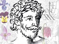 Британский ученый нашел прижизненный портрет Шекспира в книге по ботанике